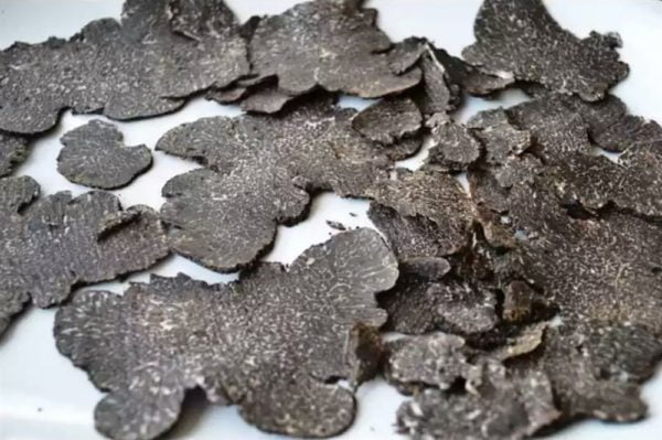 brisura de trufa negra 1 kg 2340421