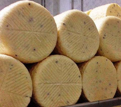 queso con trufa 2340246